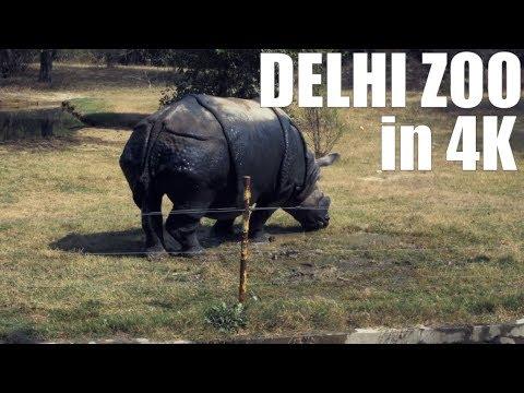 Delhi Zoo - Vlog#7