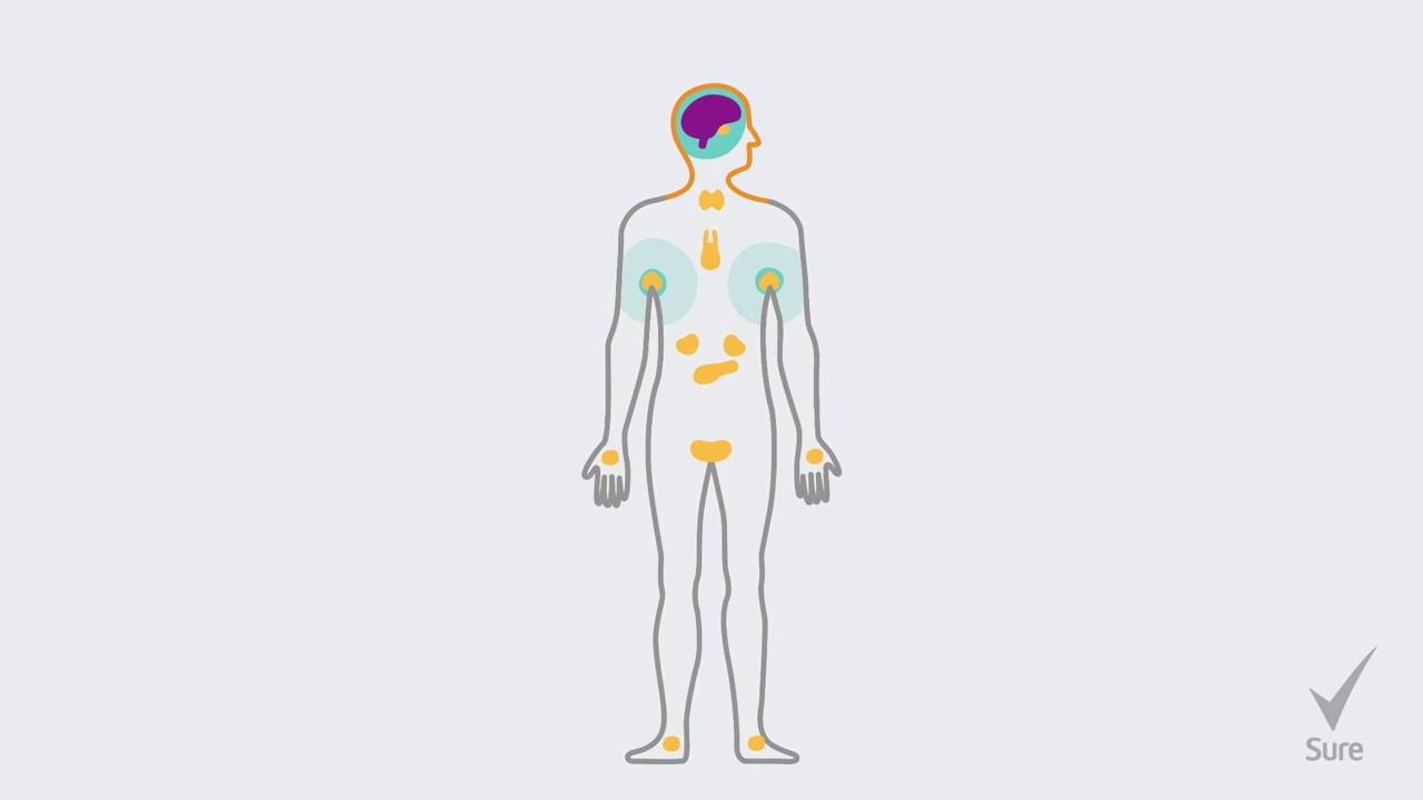 Sure - Sweat Basics - What Is Sweat