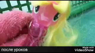 Mlp сериал ЧАРОДЕИ 9 серия