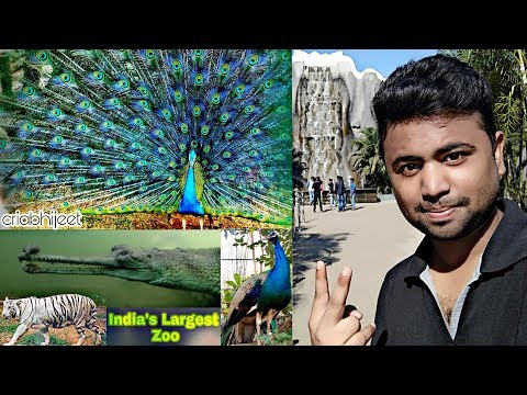 A Day in India's Largest & Biggest Zoo | criabhijeet Vlog#12