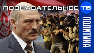 Майдан в Минске. Что будет в Беларуси? Когда скинут Лукашенко? Почему сбежала Тихановская?