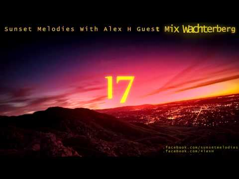 Sunset Melodies With Alex H 017 Guest Mix Wachterberg