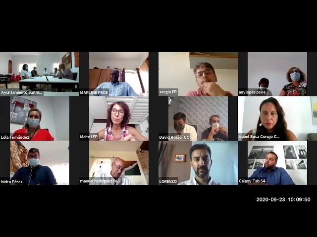 Pleno Ordinario 23 09 2020    Videoconferencia
