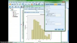 Making a Histogram with SPSS