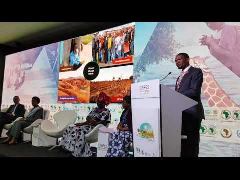 Paris Agreement and Africa
