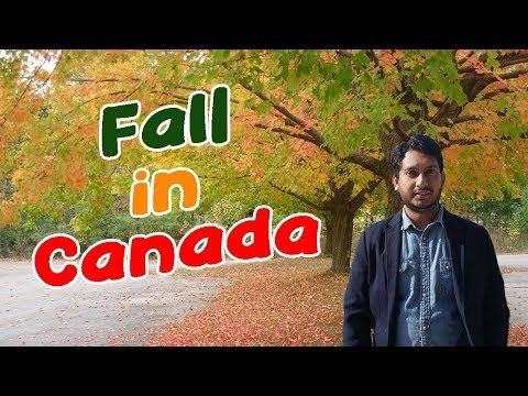 Weather (Fall) In Canada. Colorful Canada. Canadian Fall.