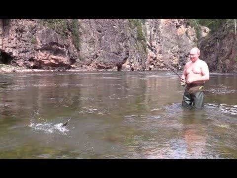 Unseen footage of Putin's vacation in Siberia: Extended cut