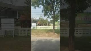 태국 치앙마이 흔한 주택가 | Common reside…