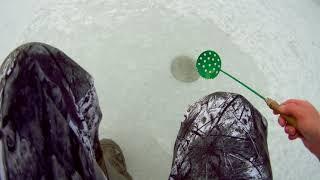 зимняя рыбалка на реке