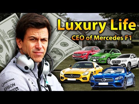 Toto Wolff Luxury Lifestyle | Bio, Family, Net Worth, Earning, House, Cars