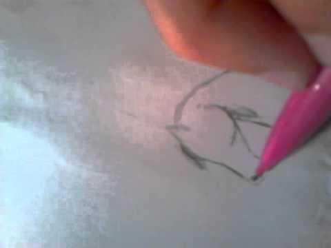 Dessiner cheval facile et rapide youtube - Cheval a dessiner facile ...
