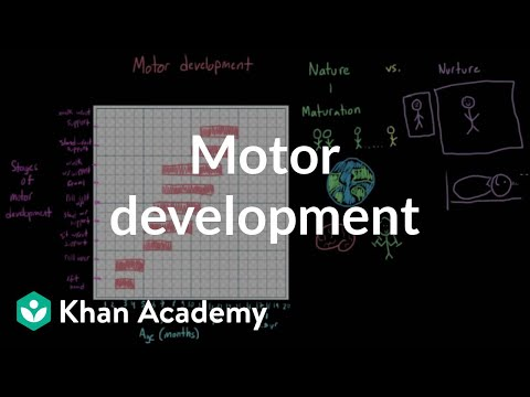 Motor development | Behavior | MCAT | Khan Academy