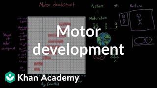 Motor development | Behavior | MCAT | Khan Academy