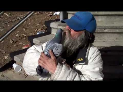 Bird Man is homeless and entertains people with pigeons.