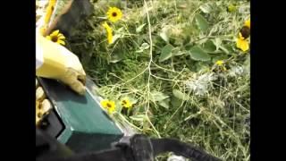 Saber Bees End of Season Prewinterizing Check