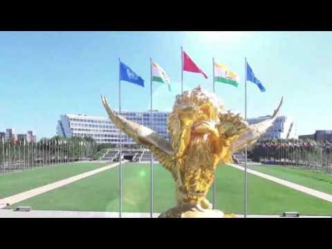 Profil Tiens Group Internasional  2016