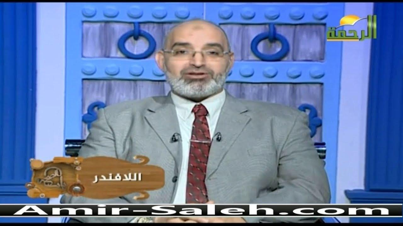 فوائد عشبة الخزامى أو زيت اللافندر | برنامج باب الصحة | الدكتور أمير صالح