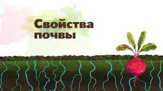 20. Состав и свойства почвы. Окружающий мир - 2 класс