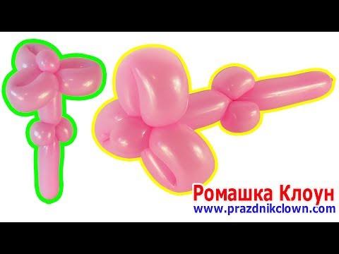 Как сделать цветочек из длинного шарика