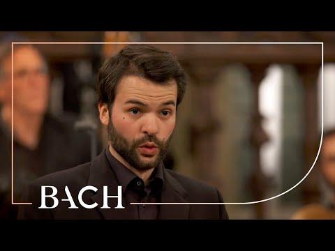 Bach - St John Passion BWV 245 - Van Veldhoven | Netherlands Bach Society