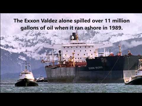 Harmful Environmental Impacts of Oil Drilling in Alaska