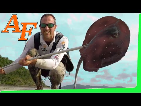 Hunting Octopus with spearing Stingray Catch and Cook ( ikan pari ) EP.408