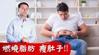 快速瘦肚子,燃燒腹部脂肪3方法!!柏格醫生