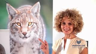 Знакомство с  баннерной системой Jumper Cat(, 2015-09-27T08:19:28.000Z)