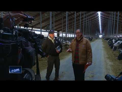 Greenleaf dairy farm wins conservation award