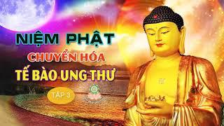Niệm Phật Chuyển Hóa Tế Bào Ung Thư (tập 3) - học Lời Phật Dậy thay đổi số mệnh Phật Pháp Nhiệm Màu