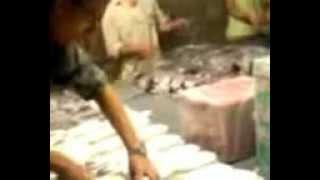 -تصنيع الحشيش فى مصر safyfawzy