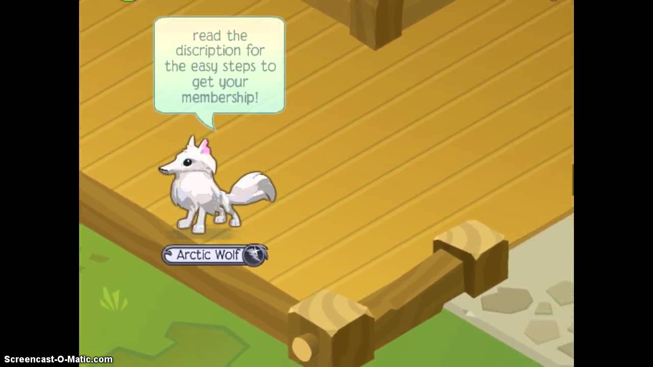 how to change your email on animal jam