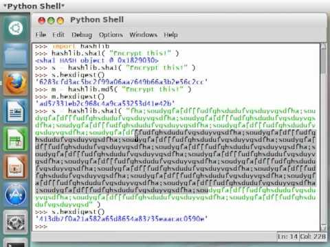 Python [hashlib] 04 SHA1 Hashing