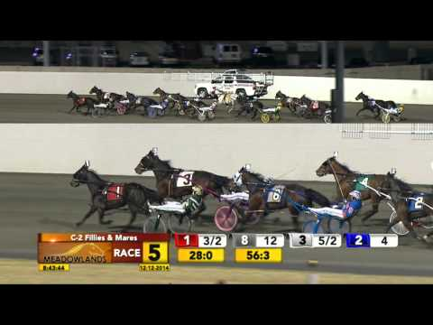 Meadowlands December 12, 2014 - Race 5 - The Summer Wind