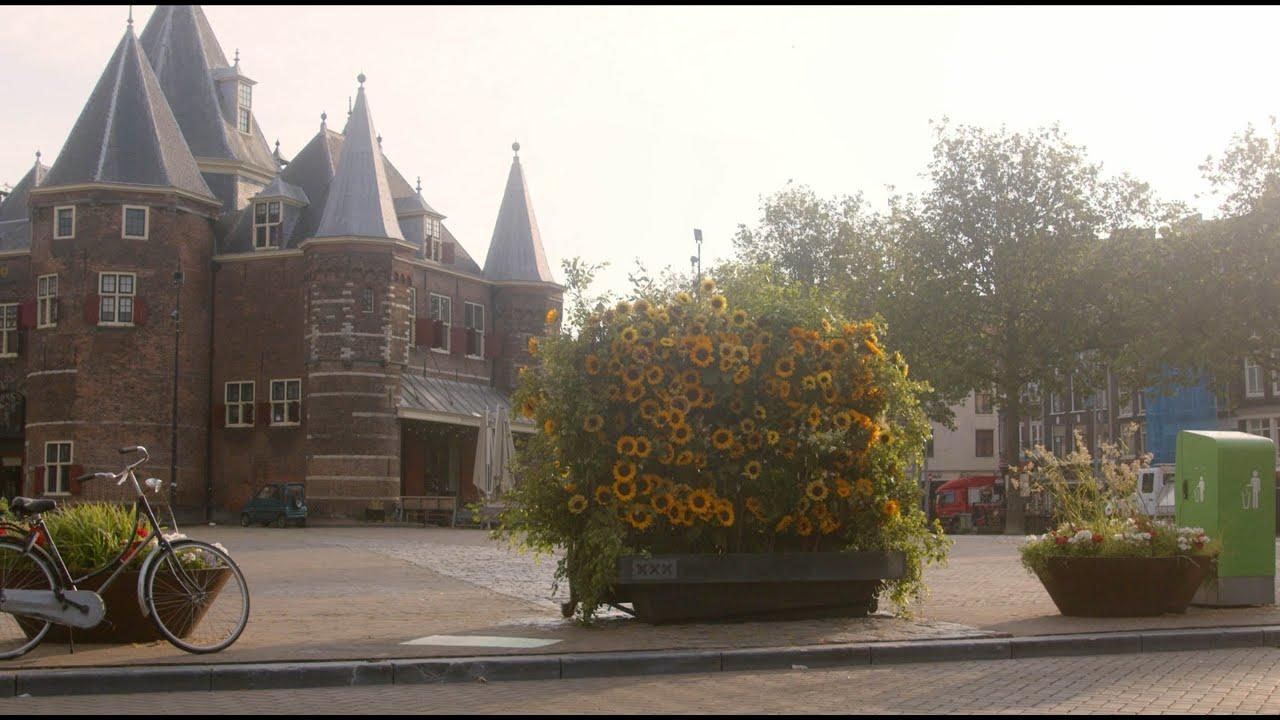 Takii x Van Gogh Museum - Sunflower Flash Amsterdam 2021