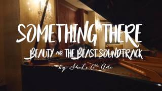 Something There (a Beauty & The Beast OST by ShiLi & Adi)