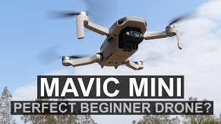 Is The Mavic Mini The Perfect Drone For Beginners? | Mavic Mini FULL Review | DansTube.TV