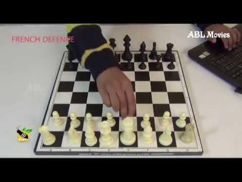 ചെസ്സ് കളിയുടെ പ്രാരംഭ നീക്കങ്ങൾ , The initial moves of the Chess game