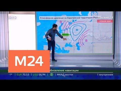 Москвичам пообещали очередной рекордный снегопад - Москва 24