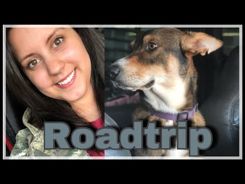 Vlogmas Day 22: Home For the Holidays | Road Trip | Louisiana