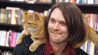 翻轉人生!遇見街貓BOB 改變了吸毒流浪漢【大千世界】街頭藝人|戒毒|人生轉折|感人勵志電影