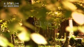 [장스프로덕션] 친환경 나무간판 '우드매니아&#…