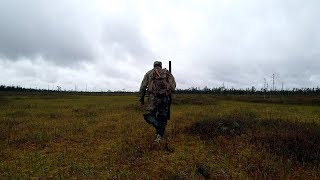 One in the forest. Duck hunting, grouse. Meeting with moose.
