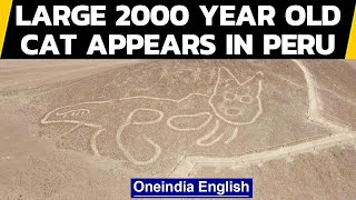 Large ancient cat appears in Peru's Nazca Lines | Oneindia News