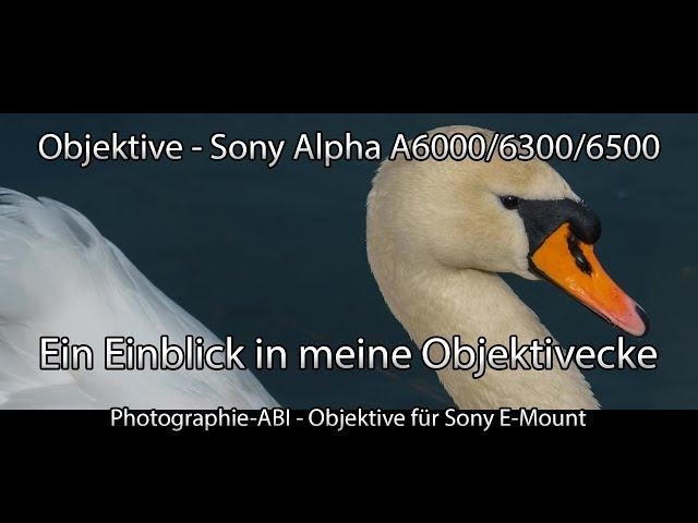Sony Alpha 6000/6300/6500 - Welche Objektive nutze ich - Was sind die Vor und Nachteile - APSC
