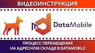 DataMobile: Урок №12. Процесс перемещение на адресном складе с помощью DataMobile