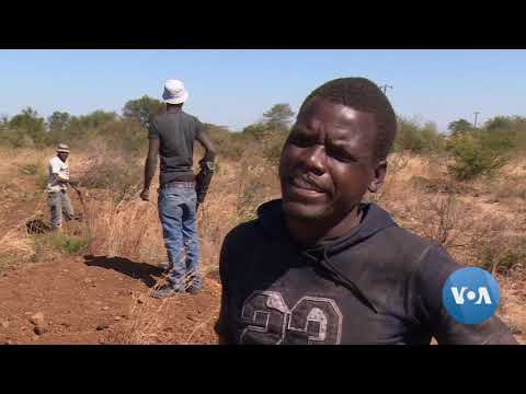 Desperate Zimbabweans Risk Death In Disused, Unlicensed Mines