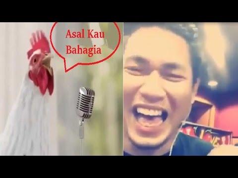 Asal Kau Bahagia - Rizal Armada Ngakak Denger Lagu Asal Kau Bahagia Versi Ayam