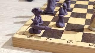 Шахматная война.Пластилиновый мультфильм