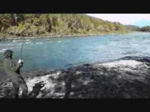 Videos Cruz Blanca Ixhuatl 225 N De Madero Veracruz Mexico